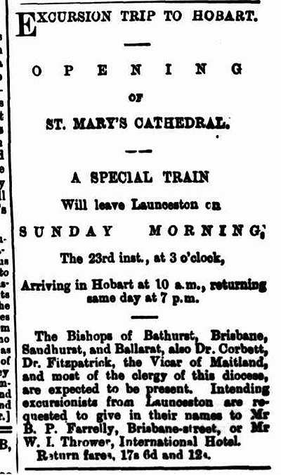 Launceston Examiner 20 January 1881