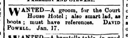 Launceston Examiner, 18 January 1881