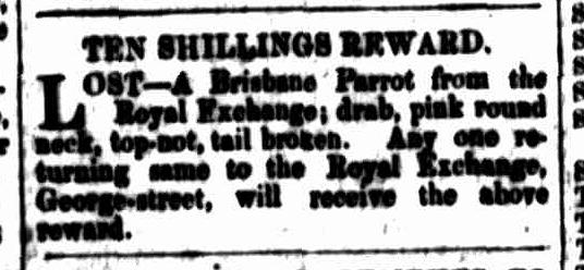 cornwall-chronicle-21-januaary-1874