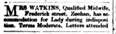 Zeehan & Dundas Herald, 11 February 1899